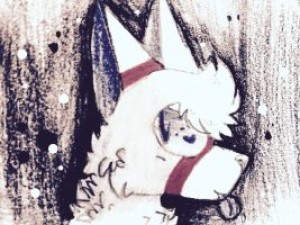 dapper-timberwolf's Profile Picture