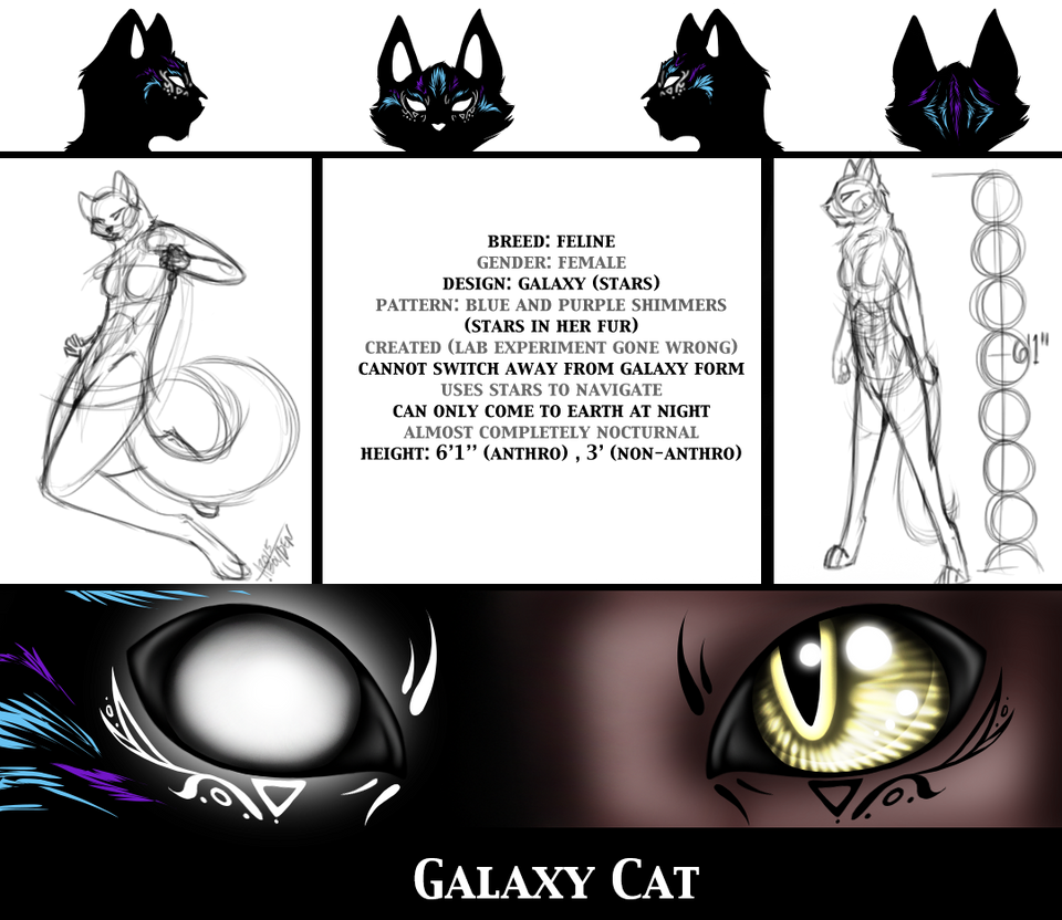 Galaxy Cat Character Sheet by TangledTabby876
