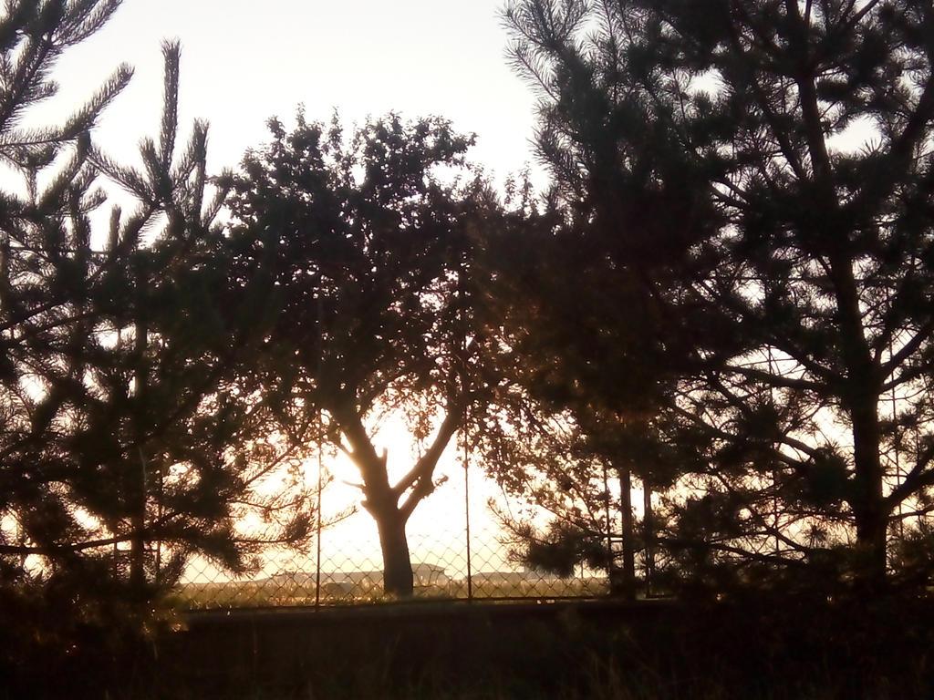 Img 20150831 063604 by ALMarkAZ