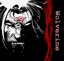 Wolverine by Jamesleon