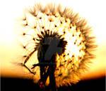 Sunset Dance by Jemiyah