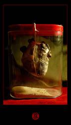 Intisar's heart by dywa