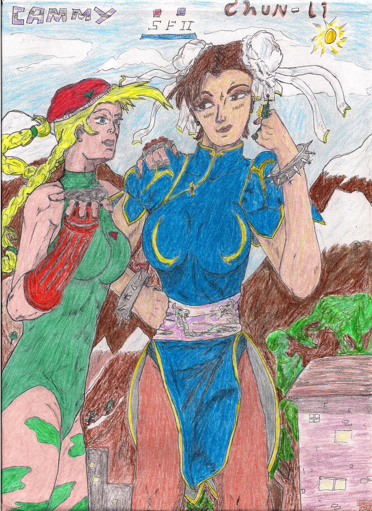 Streetfighter II: Whats a Poughkeepsie? by Narked