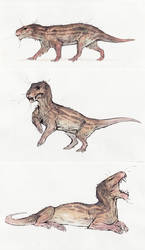 Lycaenops ornatus by Rusty-Renewal