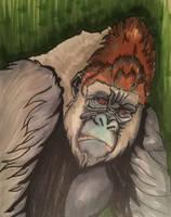 Kong by Amarbiter