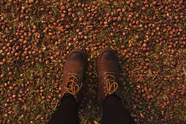 My feeties and acorns