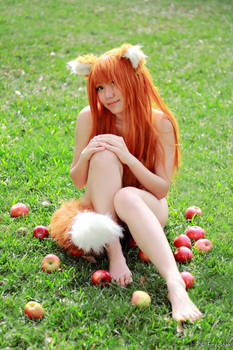 Nude Holo Spice and Wolf