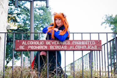 Holo Wants Her Alcohol by firecloak