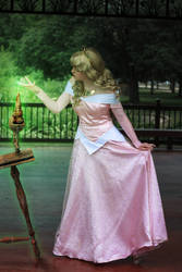 Princess Aurora-Sleeping Beauty Cosplay by firecloak