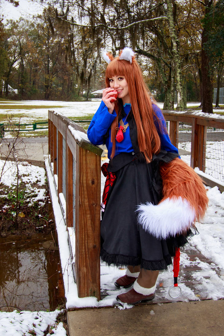 Holo, Harvest God, Spice and Wolf Cosplay by firecloak