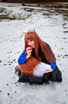 Holo and her Tail, Spice and Wolf Cosplay