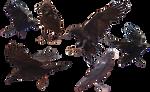 Common Raven Free Stock Photo (Transparent PNG)