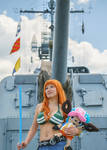 Nami and Chopper, Time Skip - One Piece Cosplay