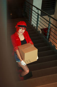 Red Blood Cell Climbs Stairs-Cells at Work Cosplay