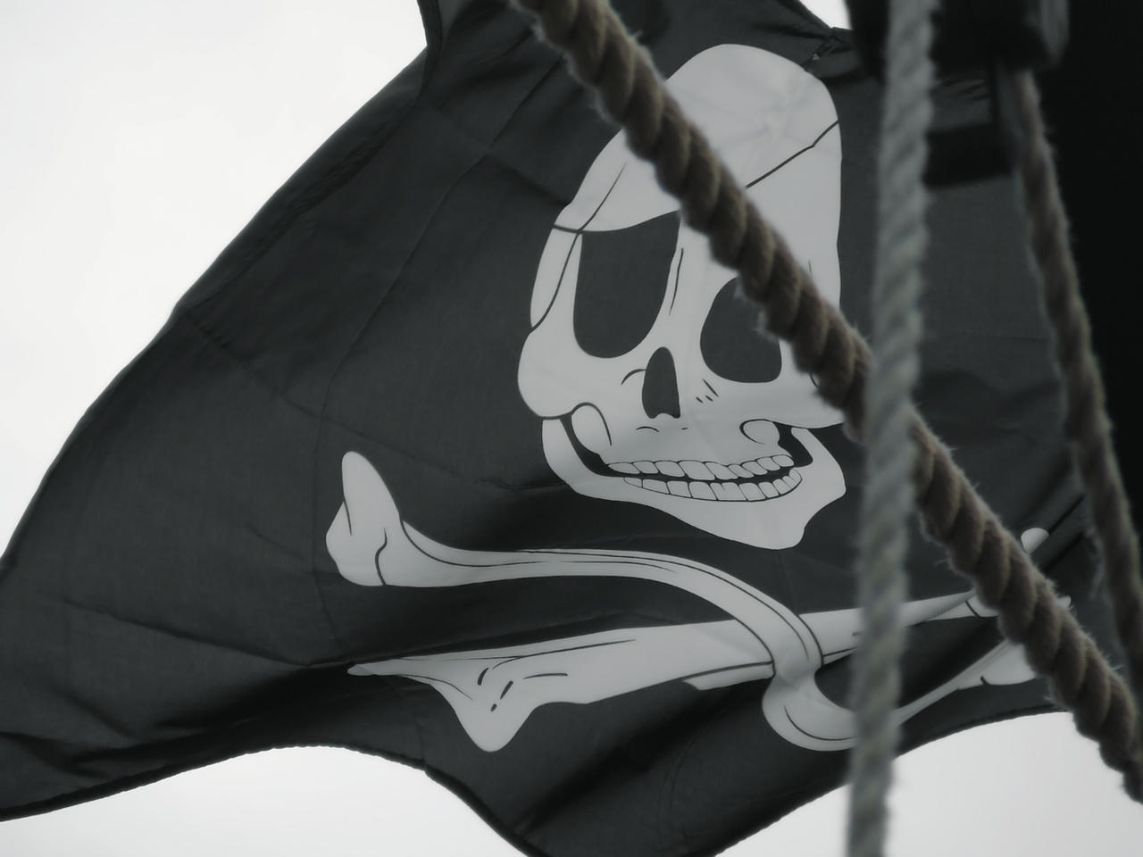 Close-Up of Jolly Roger by DamselStock