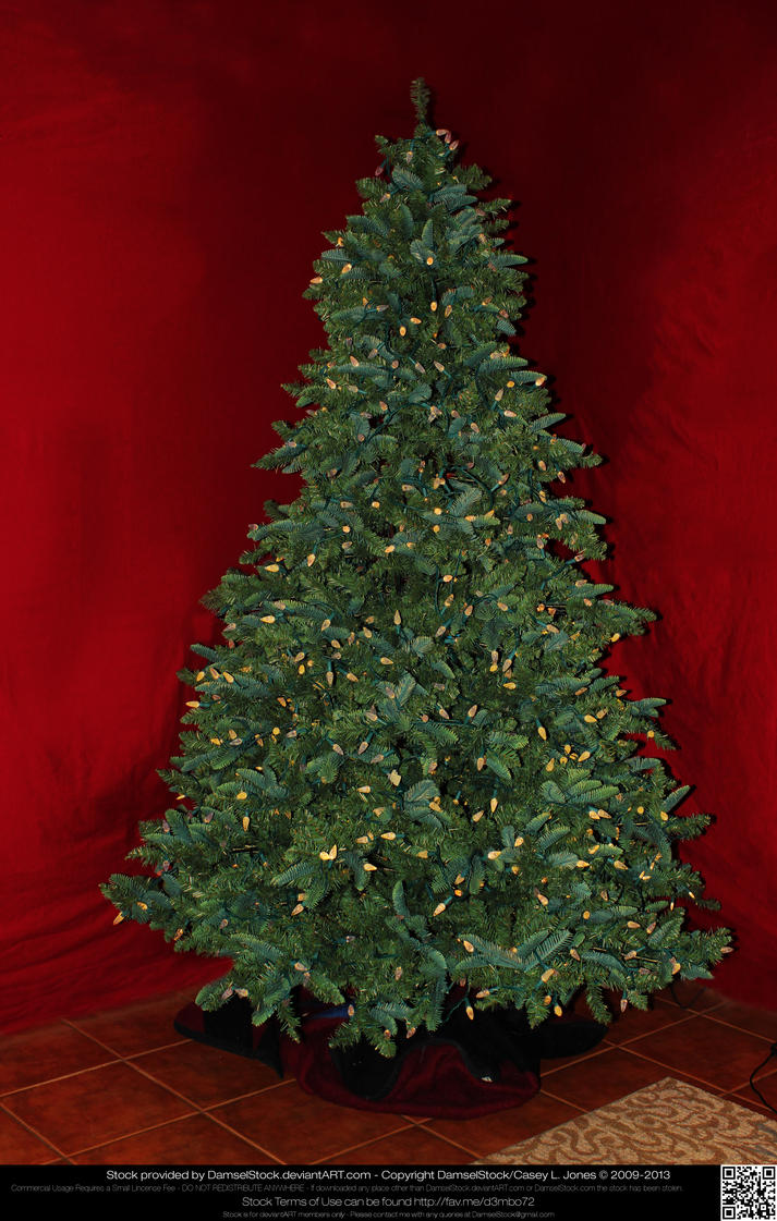 Undecorated Lit Lighted Christmas Tree By Damselstock On