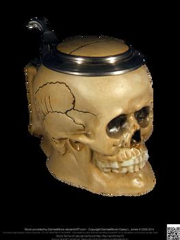 Gothic Vampire Pirate Skull Stein 11