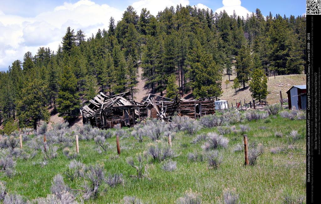 Ancient Rustic Log Cabin Ruins by DamselStock on DeviantArt