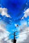 Cloud Practice 11