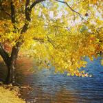 Yellow by SilverInkblot