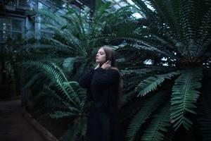 DarkJungle by Nocturny