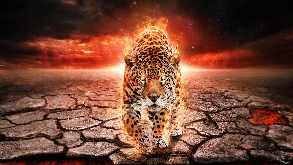Leopard by BYJU84