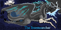 Free-use Stormcatcher Banner thing by DragonzFire95