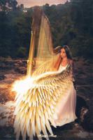 Harpy's Harp by Andromatonrecursion