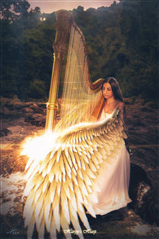 Harpy's Harp