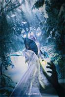 Yuki-onna by Andromatonrecursion