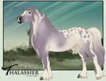 Thalassier - Import 0089