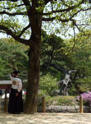 A Lady in Hanbok 2