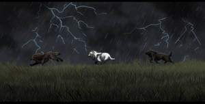 Storm Chasers -exploring-