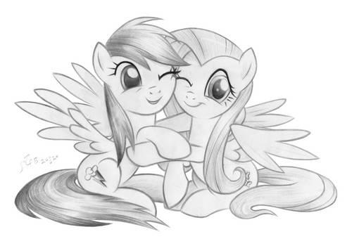Rainbow Dash and Fluttershy hugging