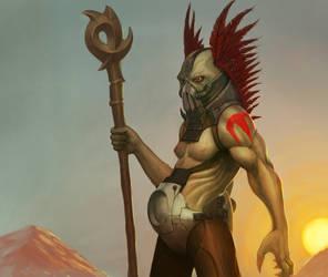Warrior by philldwill