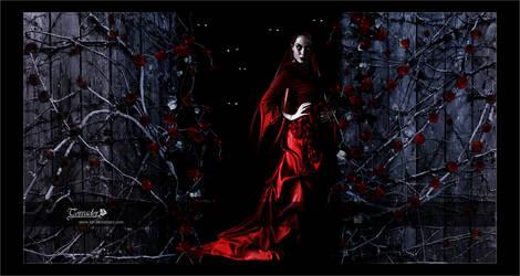 Vampire: The Toreador