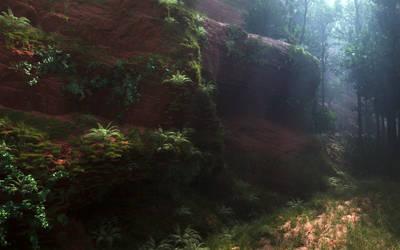 Inside Deep Forest