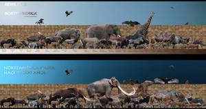 pleistocene rewilding