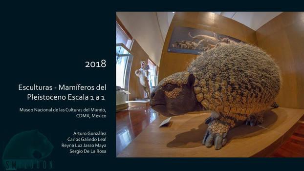 Sergio De La Rosa  Glyptodon