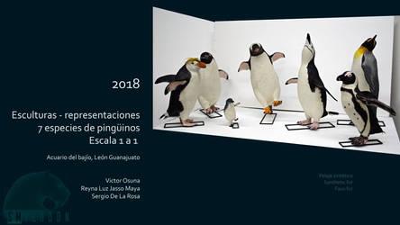 Sergio De La Rosa  penguins