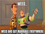 Weed and Gay Marriage Everywhere