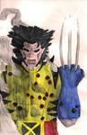 Wolverine by EmiliaArgon