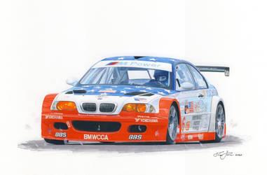 BMW wins Petit Lemans