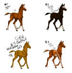 Foal Auction 2