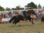 Rodeo Stock 4