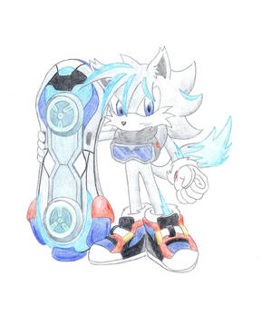 Sonic Riders Timber