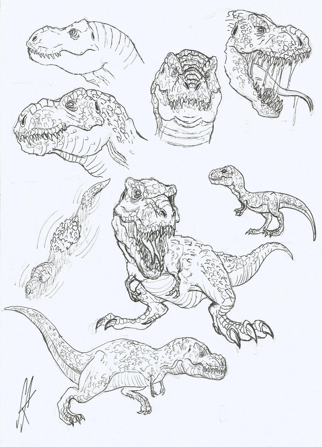 jp novel t rex by devilkais on deviantart