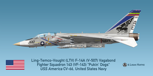 V-507 F-14A - VF-143 Pukin' Dogs - AIM-54A Phoenix by comradeloganov
