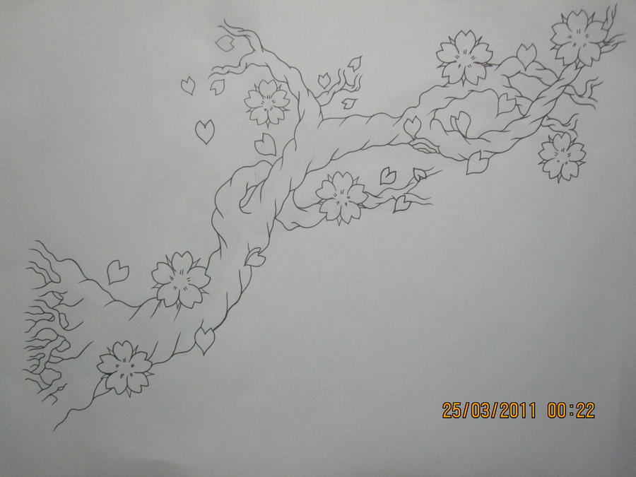How To Draw A Cherry Blossom Tree In Pencil Cherry blossom tree