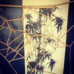 ShibariChallenge Day Five - Spiderweb